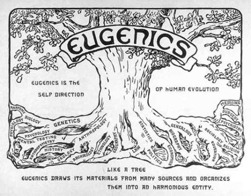 The Eugenics Tree